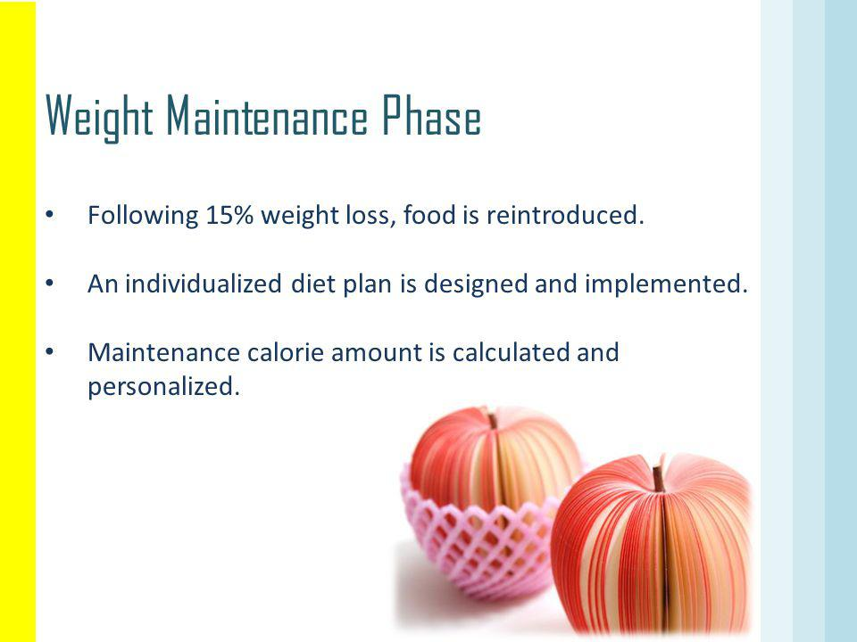 Weight Maintenance Phase