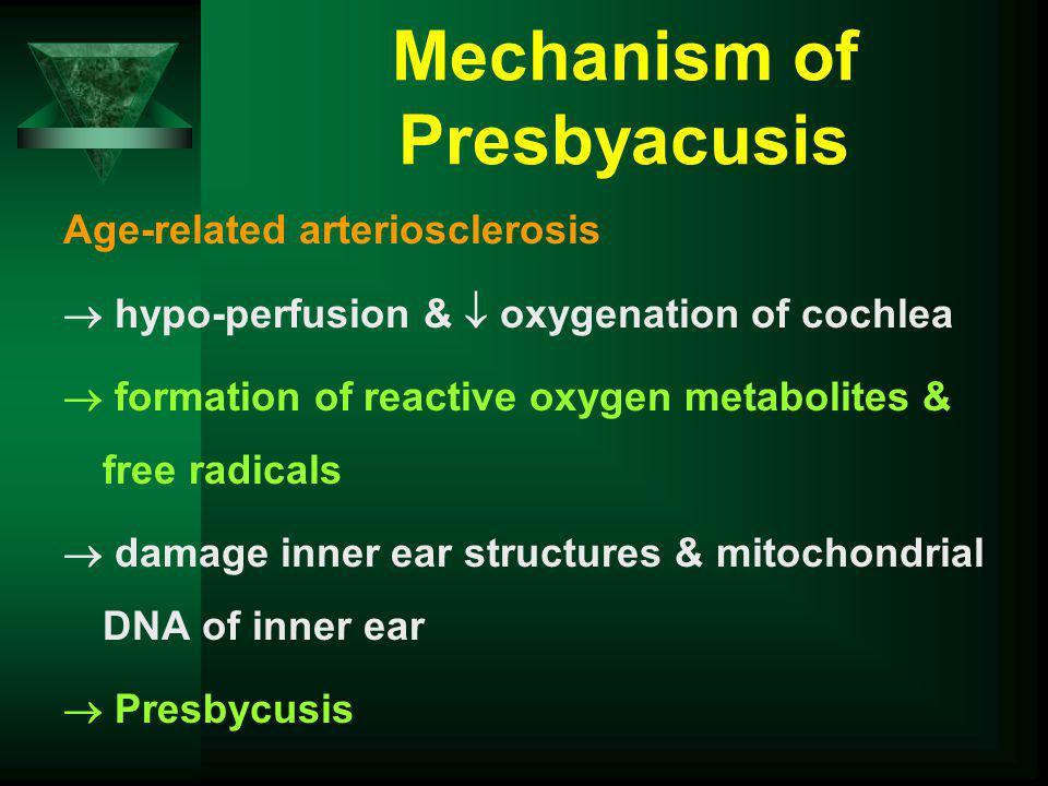 Mechanism of Presbyacusis