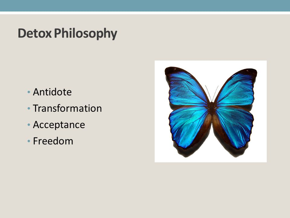 Detox Philosophy Antidote Transformation Acceptance Freedom