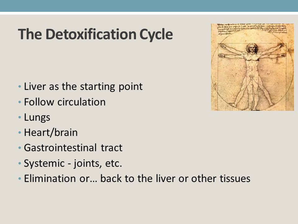 The Detoxification Cycle