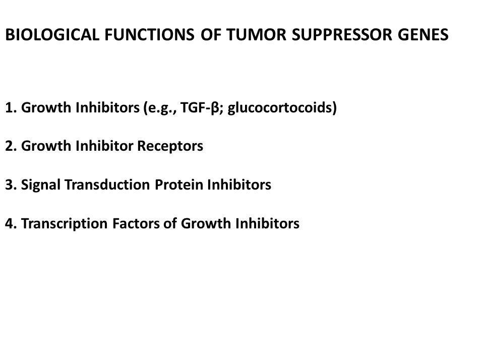 BIOLOGICAL FUNCTIONS OF TUMOR SUPPRESSOR GENES