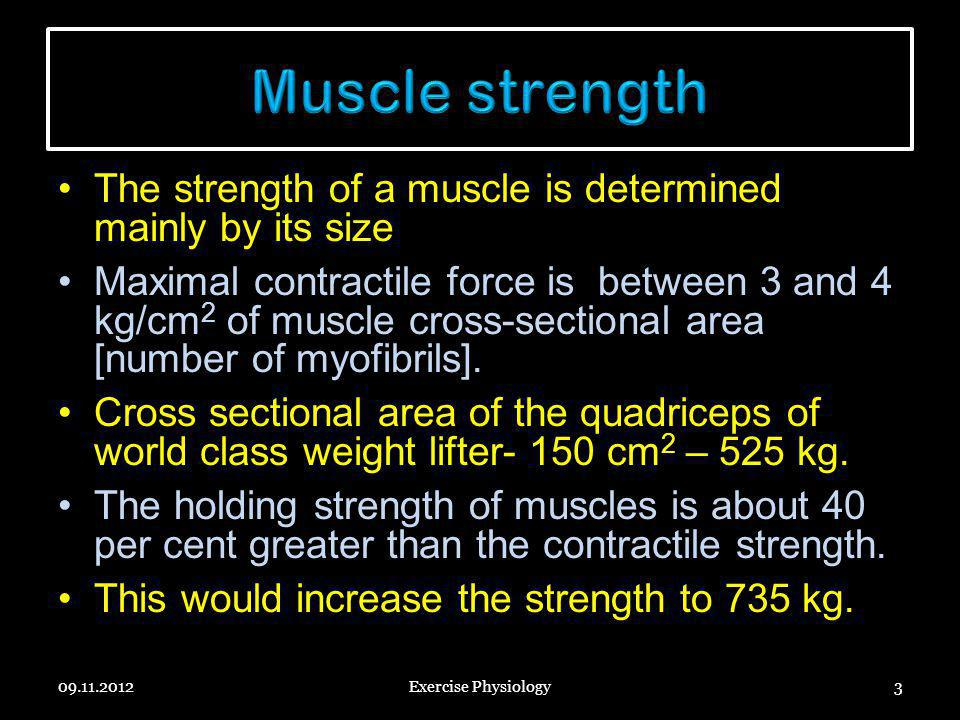 Muscle strength The strength of a muscle is determined mainly by its size.