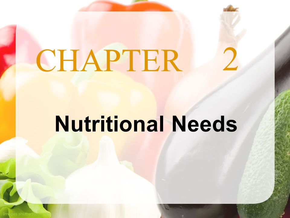 2 Nutritional Needs