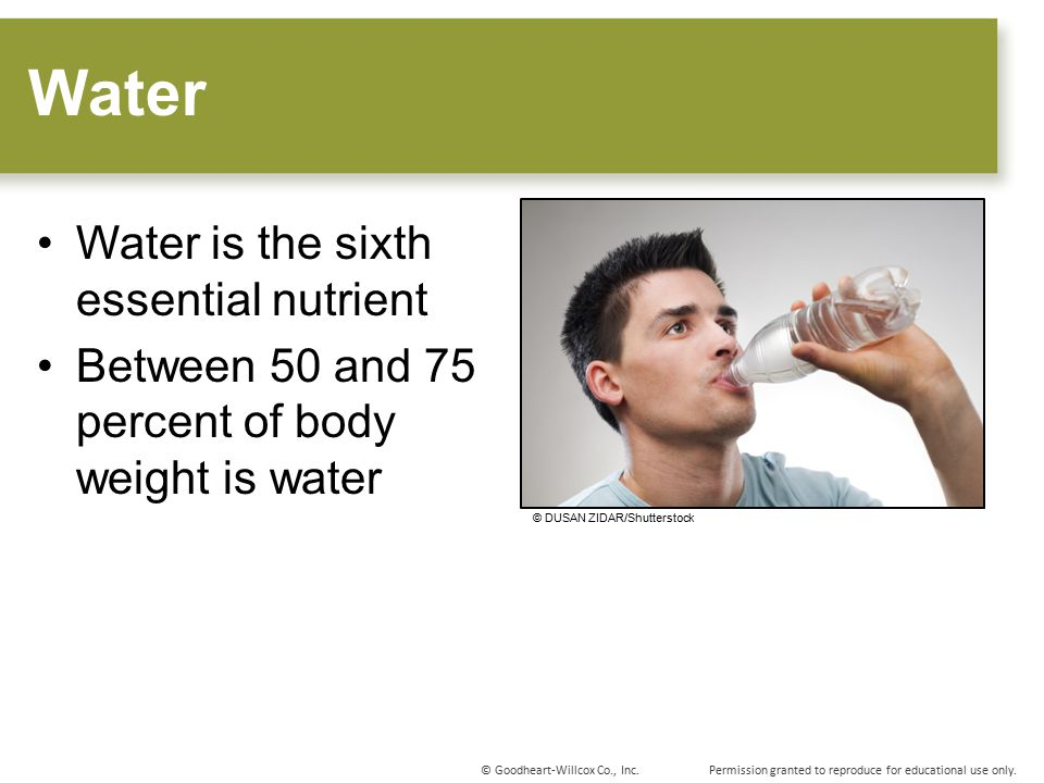 Water Water is the sixth essential nutrient
