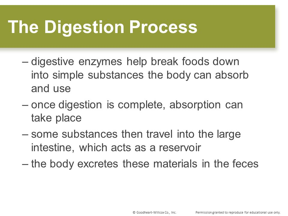The Digestion Process digestive enzymes help break foods down into simple substances the body can absorb and use.