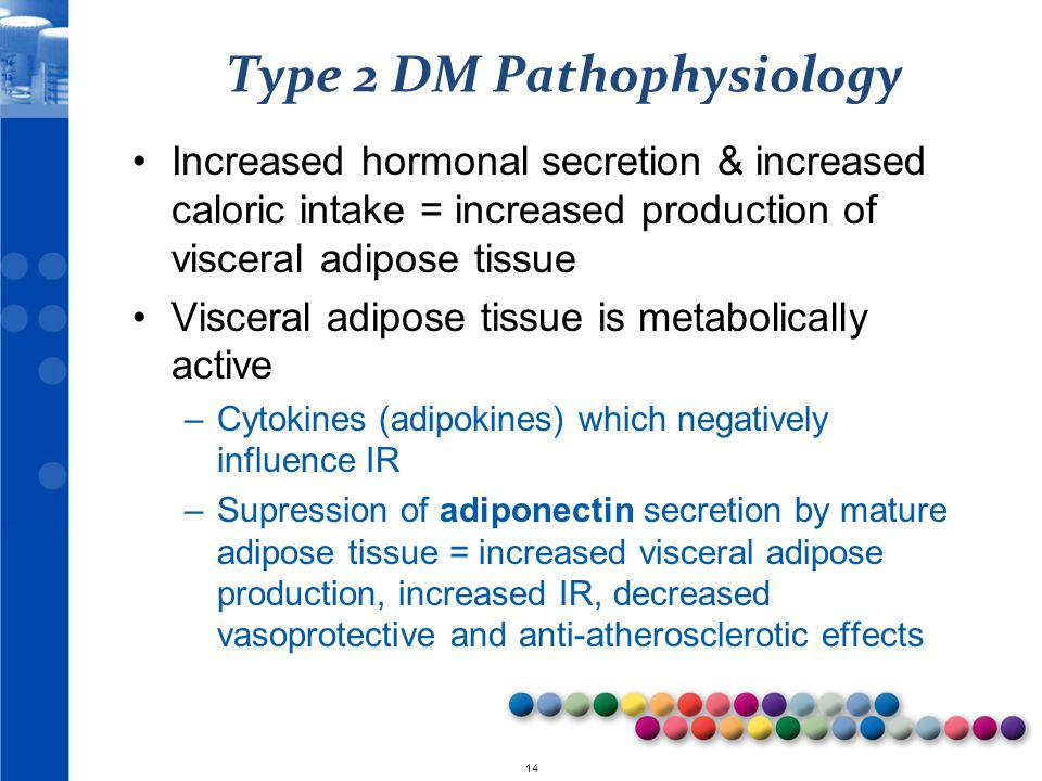 Type 2 DM Pathophysiology
