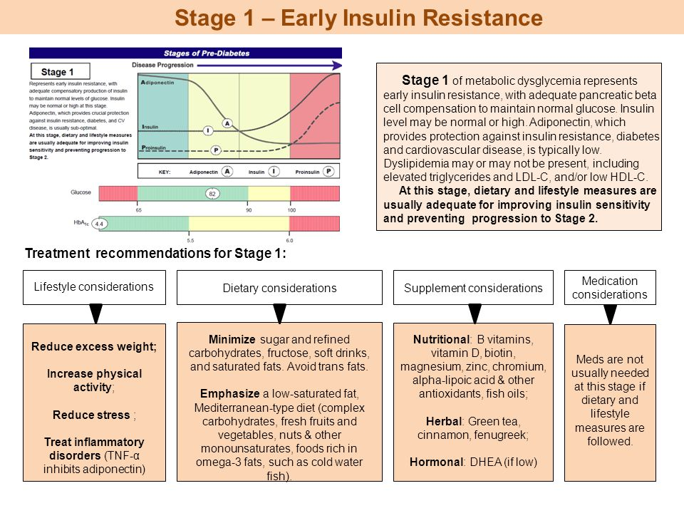 Stage 1 – Early Insulin Resistance