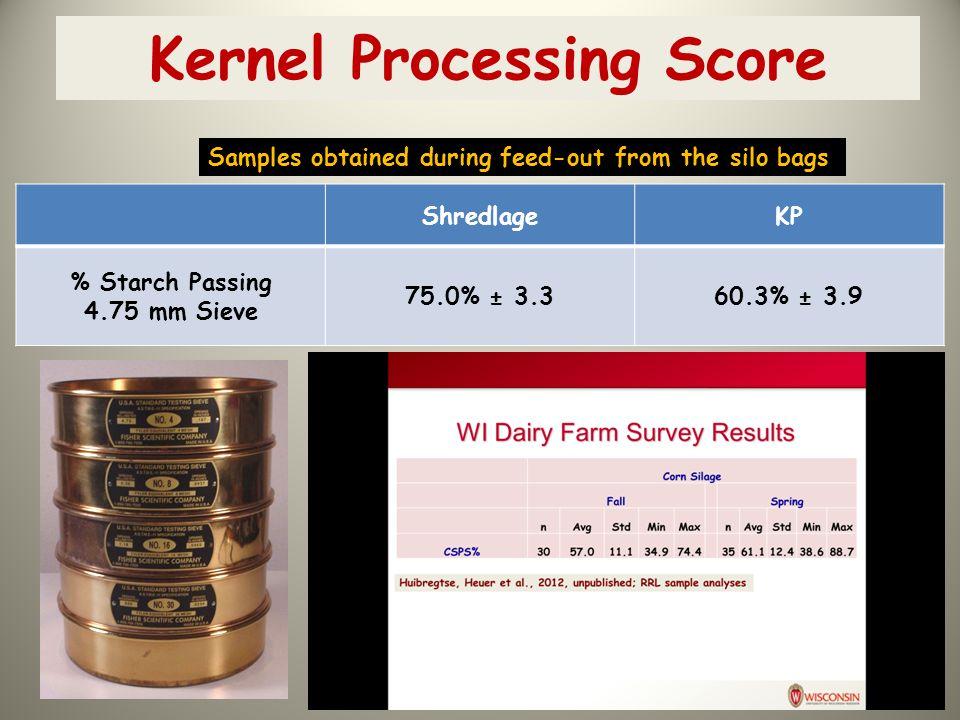 Kernel Processing Score