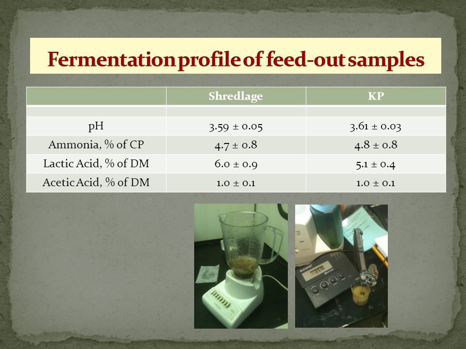 Fermentation profile of feed-out samples