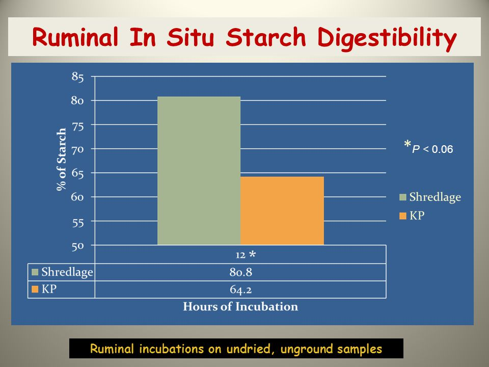 Ruminal In Situ Starch Digestibility