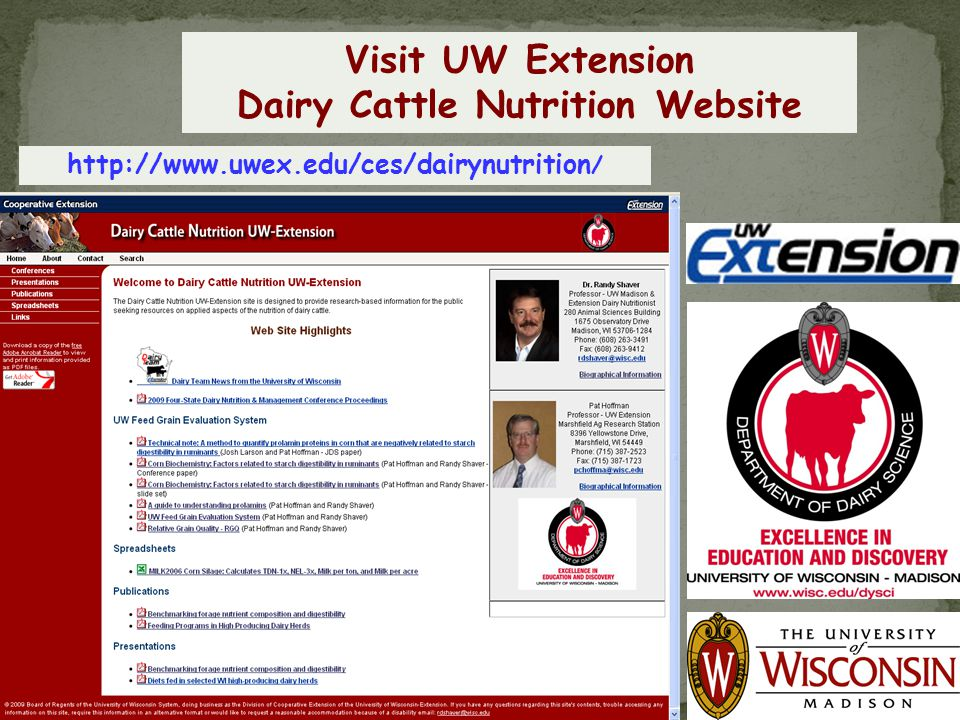 Dairy Cattle Nutrition Website