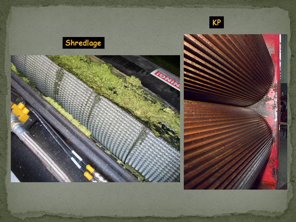 KP Shredlage