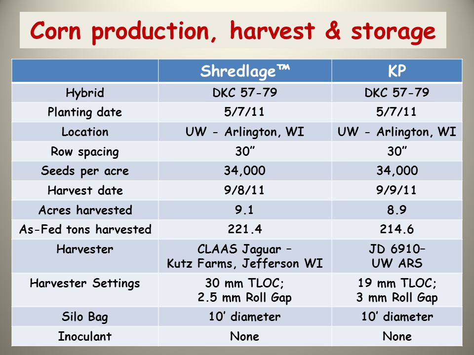 Corn production, harvest & storage
