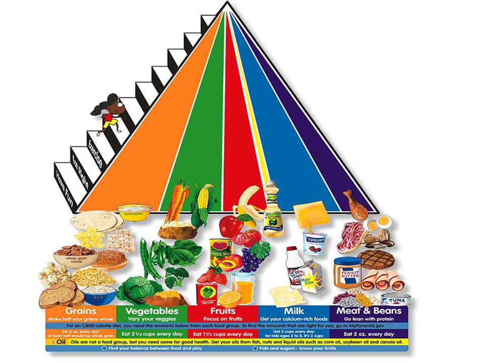 The Food Groups A good diet includes food from
