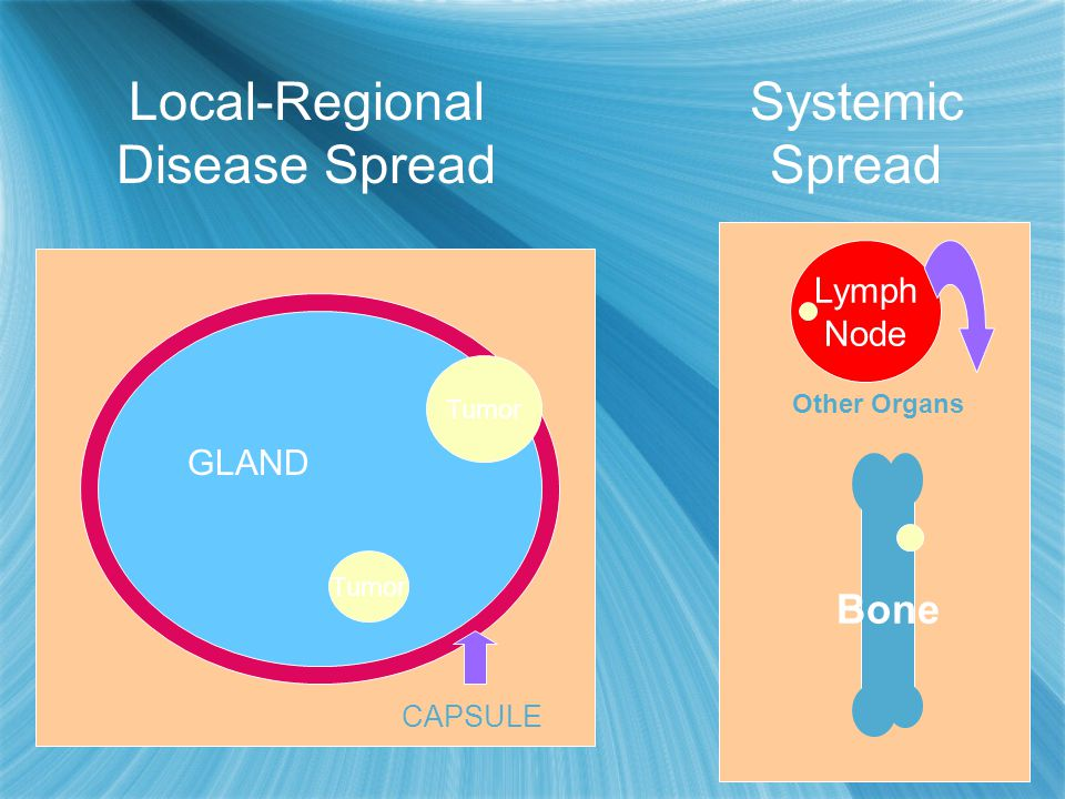 Local-Regional Disease Spread