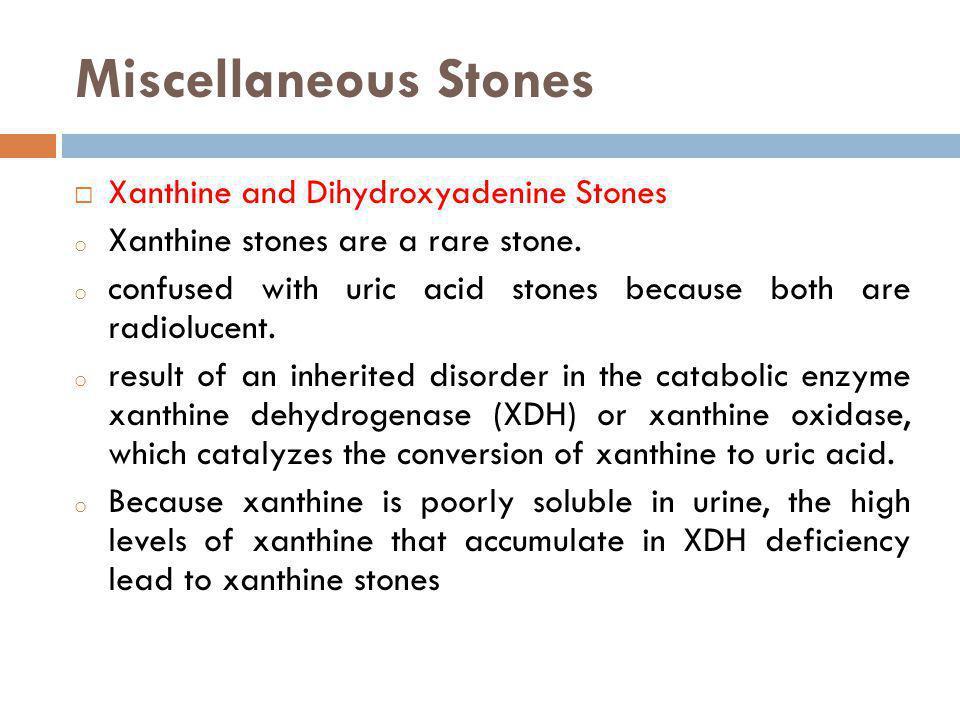 Miscellaneous Stones Xanthine and Dihydroxyadenine Stones