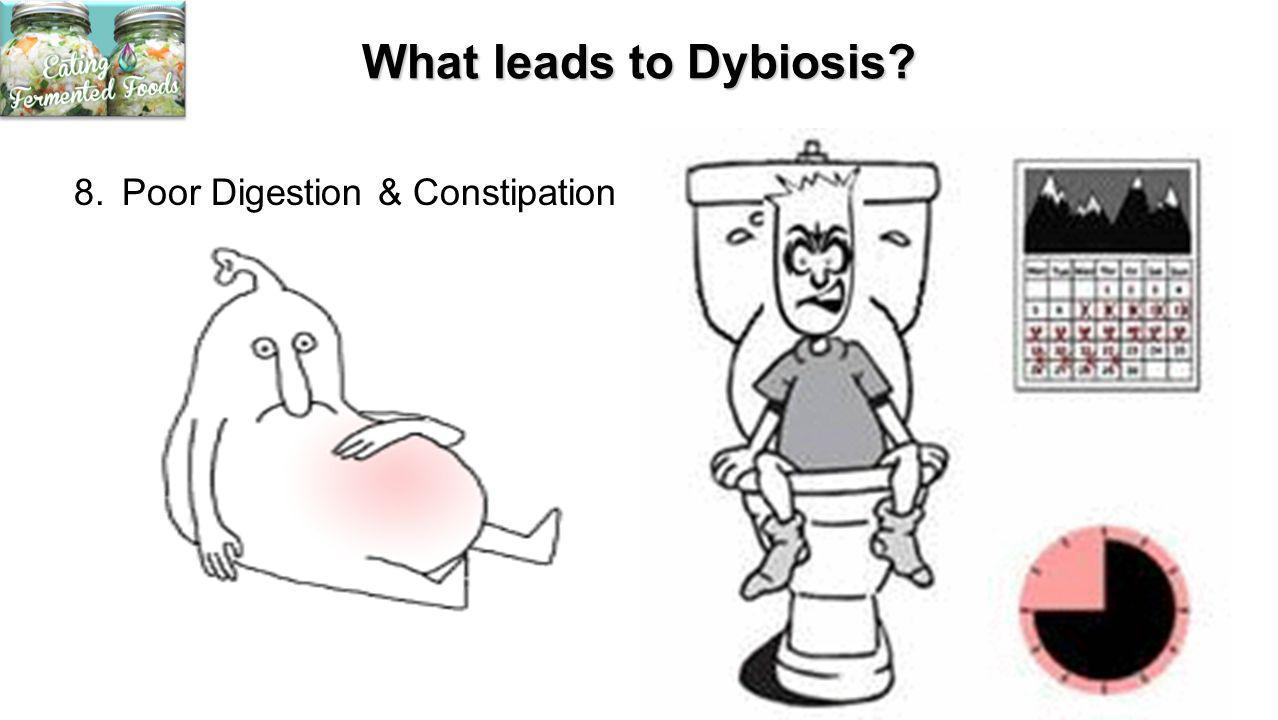 What leads to Dybiosis 8. Poor Digestion & Constipation