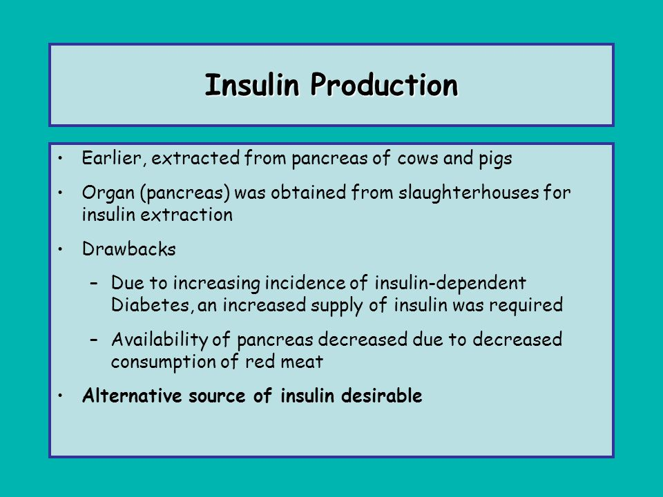 Insulin Production Earlier, extracted from pancreas of cows and pigs