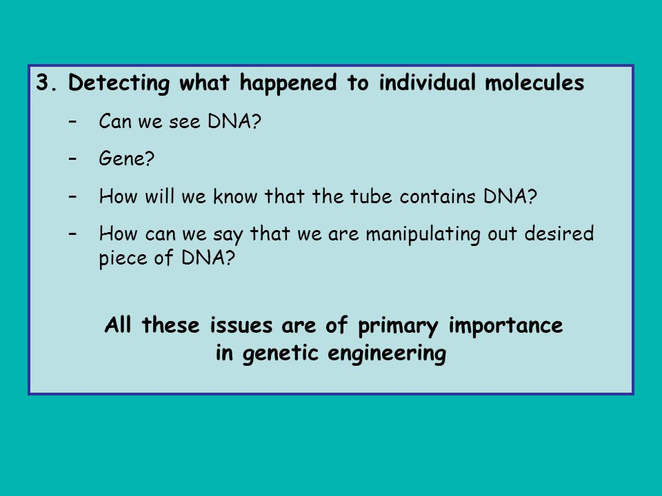 in genetic engineering
