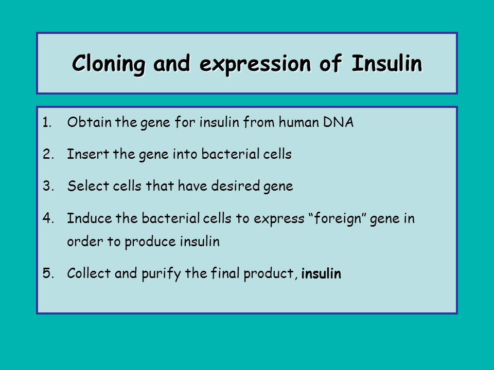 Cloning and expression of Insulin