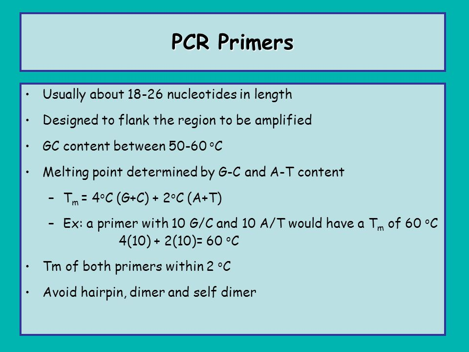 PCR Primers Usually about 18-26 nucleotides in length