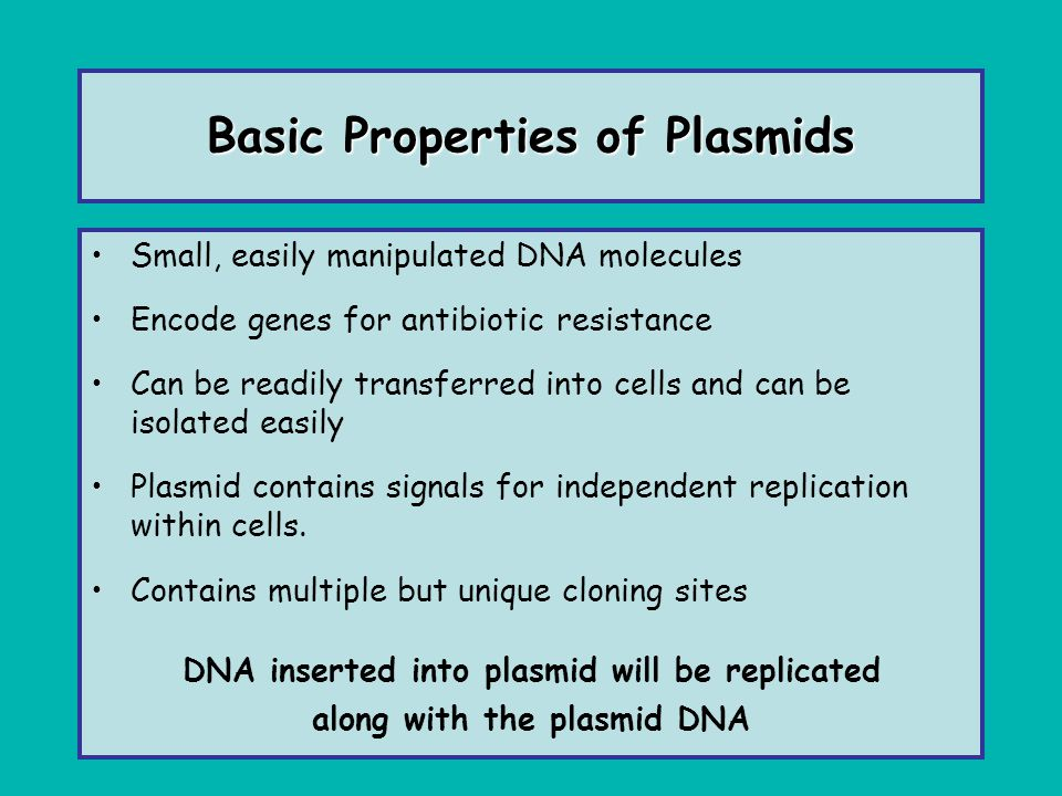 Basic Properties of Plasmids