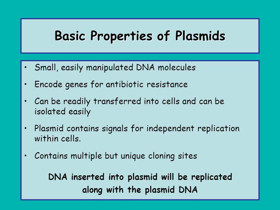 Basic Properties of Plasmids