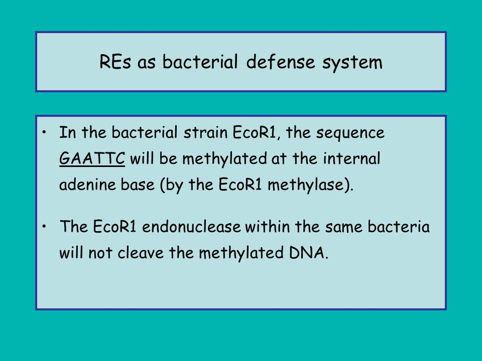 REs as bacterial defense system