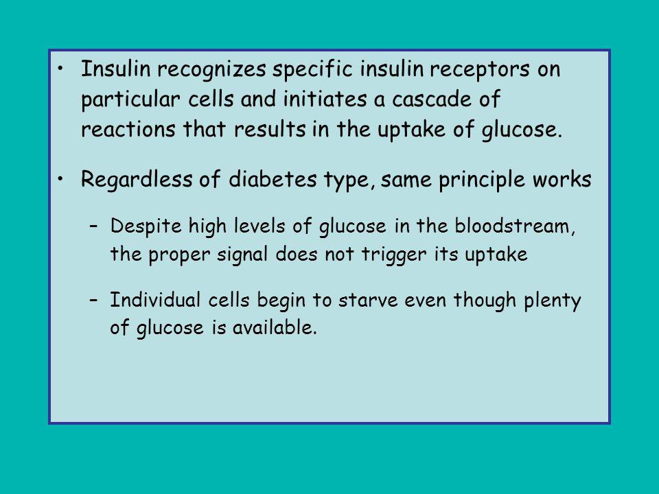 Regardless of diabetes type, same principle works