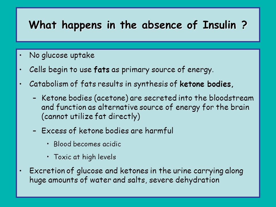What happens in the absence of Insulin