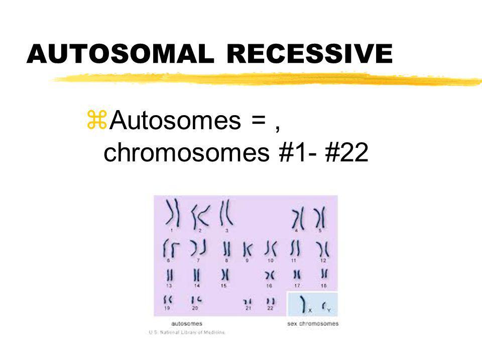 AUTOSOMAL RECESSIVE Autosomes = , chromosomes #1- #22