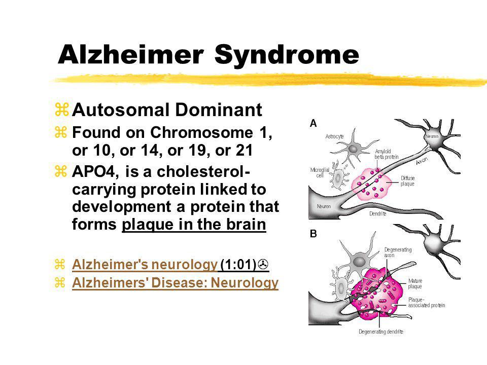 Alzheimer Syndrome Autosomal Dominant