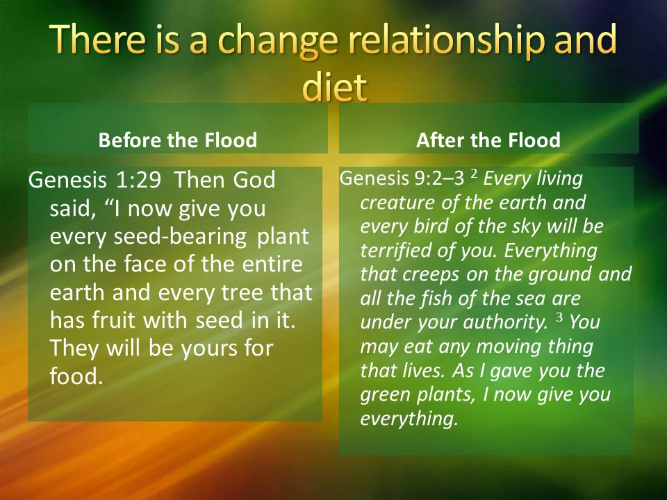 There is a change relationship and diet