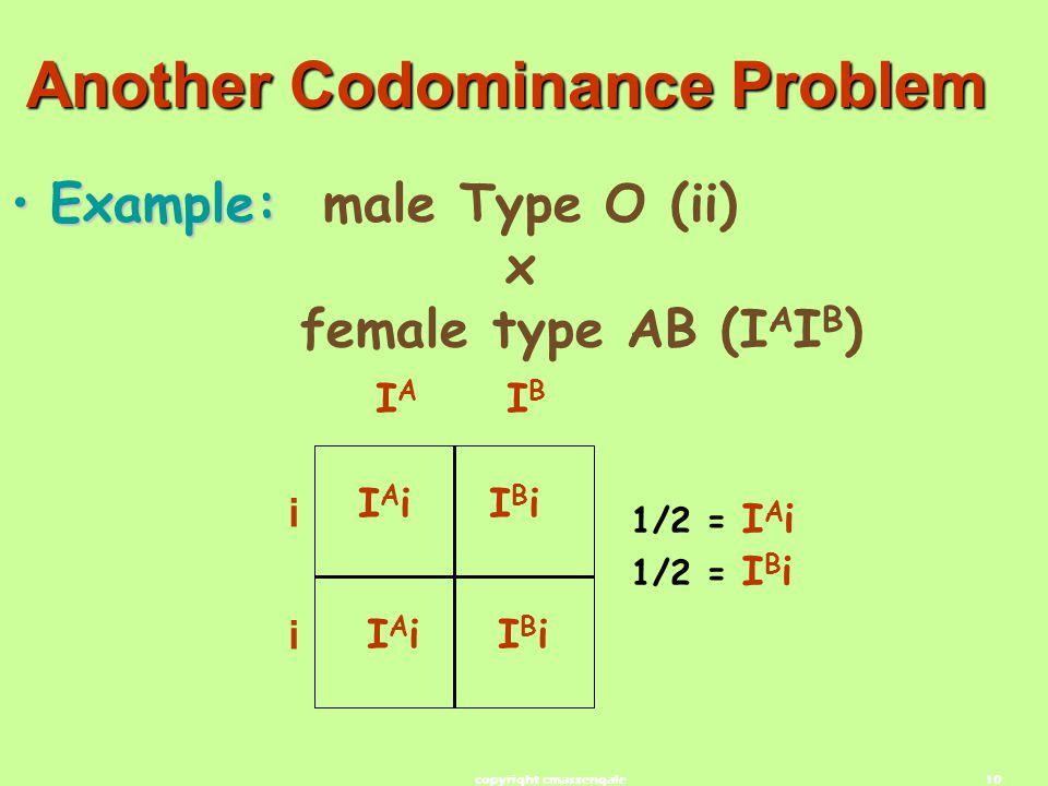Another Codominance Problem