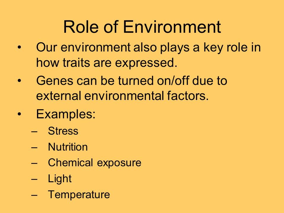 Role of Environment Our environment also plays a key role in how traits are expressed.