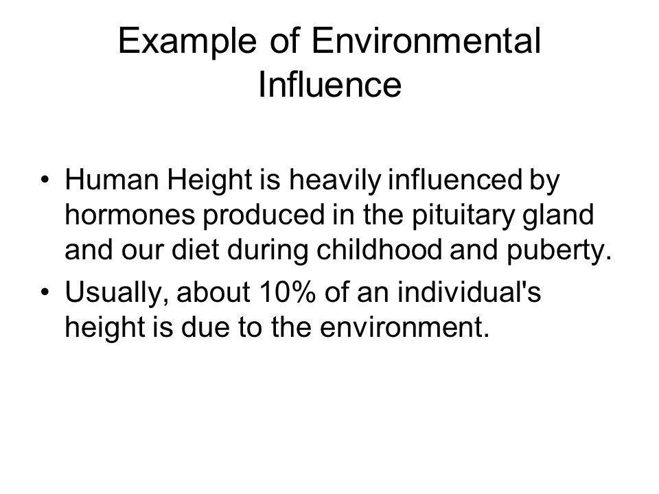 Example of Environmental Influence