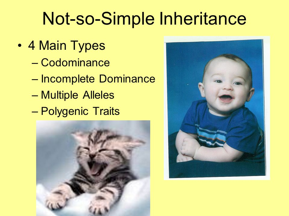 Not-so-Simple Inheritance