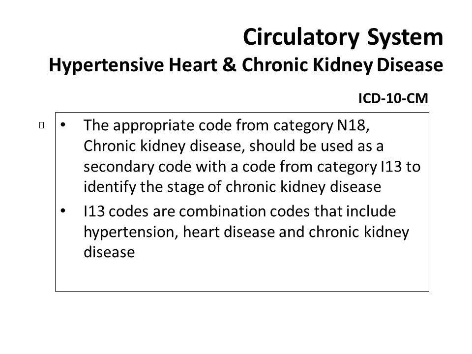 Circulatory System Hypertensive Heart & Chronic Kidney Disease