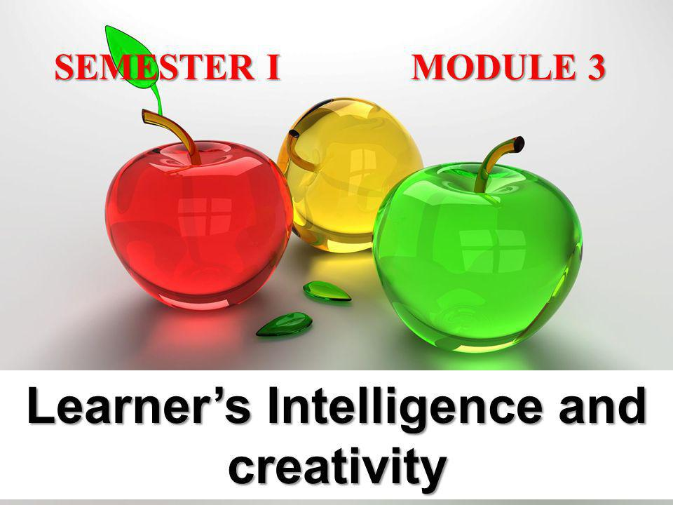Learner's Intelligence and creativity
