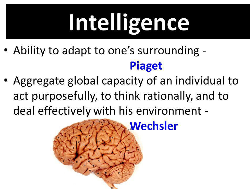 Intelligence Ability to adapt to one's surrounding - Piaget