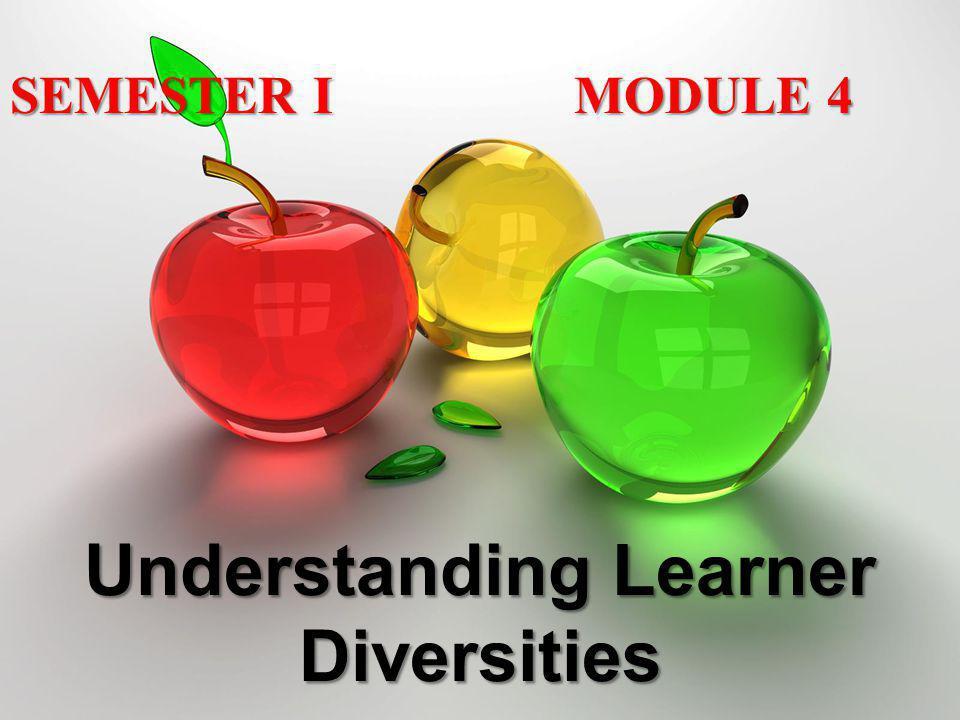Understanding Learner Diversities