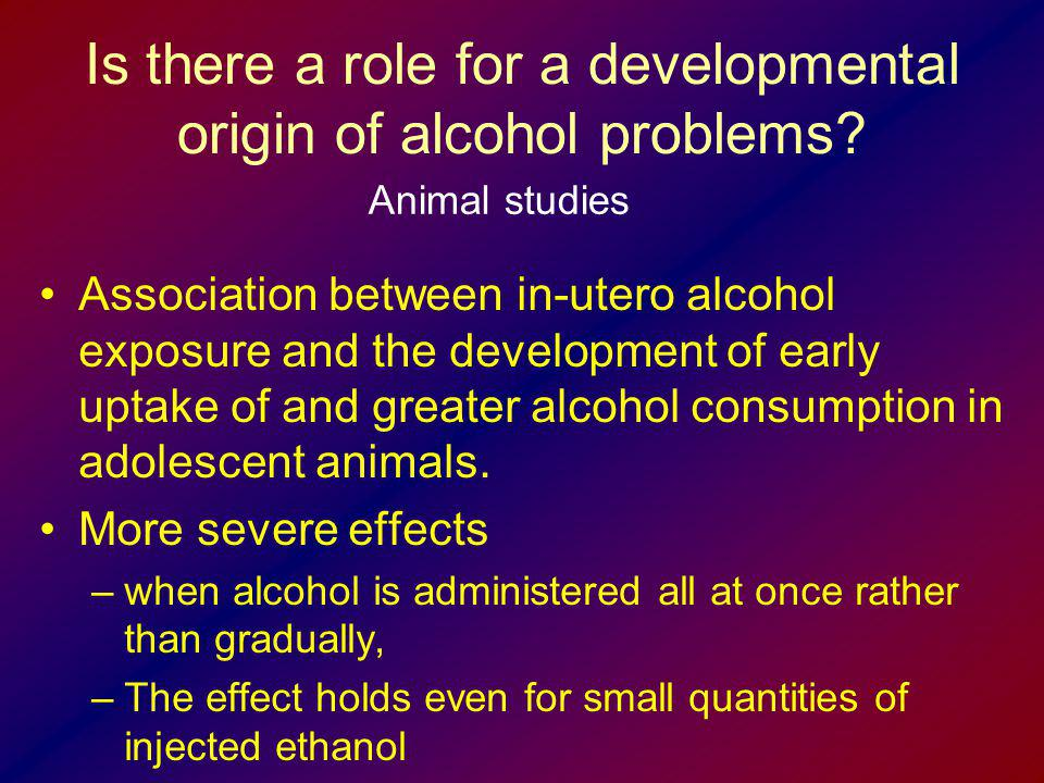 Is there a role for a developmental origin of alcohol problems