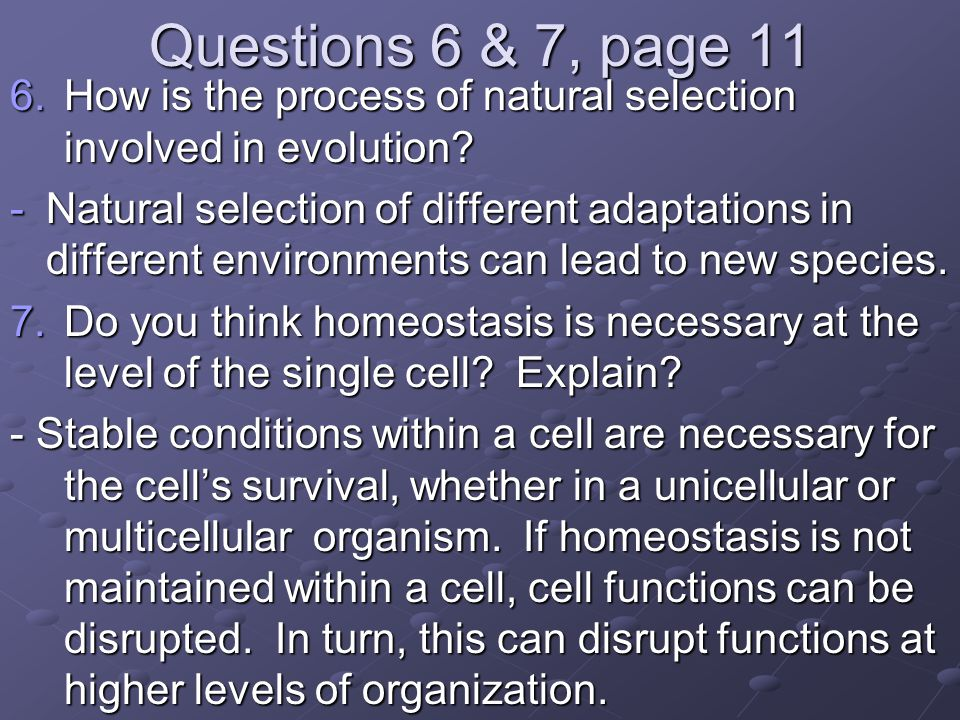 Questions 6 & 7, page 11 How is the process of natural selection involved in evolution