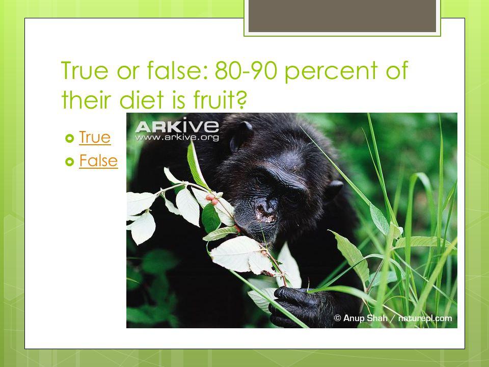 True or false: 80-90 percent of their diet is fruit