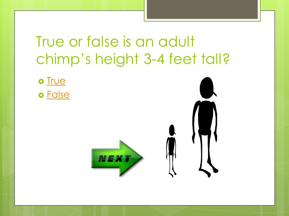 True or false is an adult chimp's height 3-4 feet tall