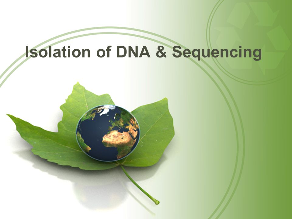 Isolation of DNA & Sequencing