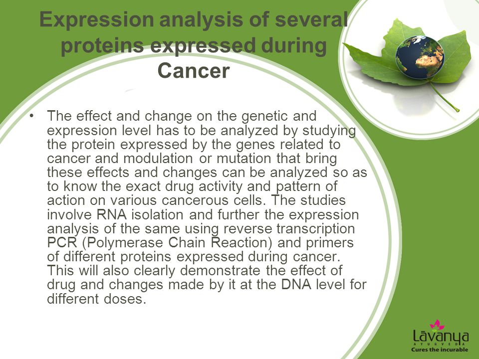 Expression analysis of several proteins expressed during Cancer