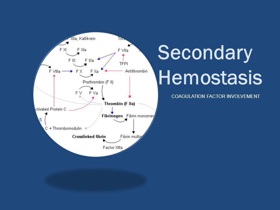Secondary Hemostasis COAGULATION FACTOR INVOLVEMENT