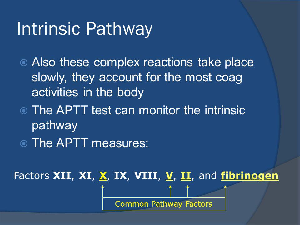 Intrinsic Pathway Also these complex reactions take place slowly, they account for the most coag activities in the body.