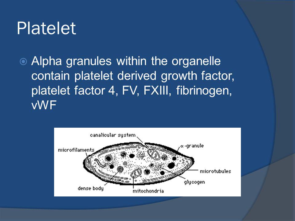 Platelet Alpha granules within the organelle contain platelet derived growth factor, platelet factor 4, FV, FXIII, fibrinogen, vWF.